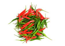 Red chili peppers isolated Royalty Free Stock Images