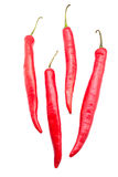 Red chili peppers. Isolated on the white background Stock Image