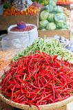 Red chili peppers in market. Heap of red chili peppers (Thai) in a basket ready for sell in indonesian street market. Selective focus, natural light Stock Photos