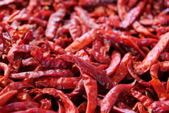 The red chili peppers on the market. Royalty Free Stock Images