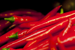 Red Chili Peppers. A Pile of Red Hot Chili Peppers Royalty Free Stock Photos