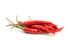 Red chili peppers Stock Photography
