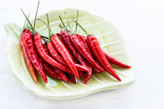 Red chili peppers on plate over light background Royalty Free Stock Photo