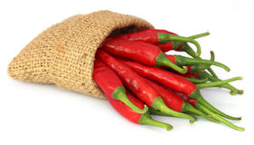 Red chili peppers in a sack bag Royalty Free Stock Photos