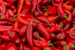 Red chili peppers for sale. A table is filled with red chilli peppers for sale at a market in Istanbul Royalty Free Stock Image