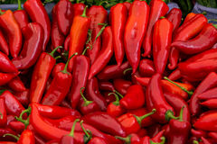 Red chili peppers for sale. A table is filled with red chilli peppers for sale at a market in Istanbul Stock Image