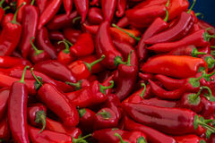 Red chili peppers for sale. A table is filled with red chilli peppers for sale at a market in Istanbul Stock Images