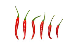 Red chili peppers. Selection of various types of red chili peppers royalty free stock photos