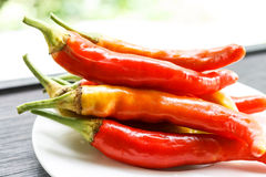 Red chili. Peppers served on a plate Royalty Free Stock Photo