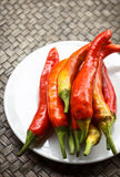 Red chili. Peppers served on a plate Royalty Free Stock Photography