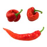 Red chili peppers in smile Stock Image