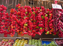 Red and Chili Peppers, Sorrento, Italy. Bright colorful red and chili peppers hang in front of a store, for sale in the historic district of Sorrento, a major Royalty Free Stock Image