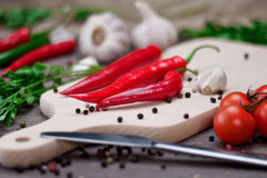 Red chili peppers and spices on cutting board. Stock Images