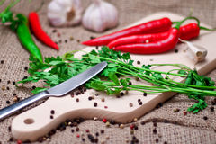 Red chili peppers and spices on cutting board. Royalty Free Stock Photography