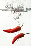 Red chili peppers under water Royalty Free Stock Image
