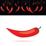 Red chili peppers vector illustration Royalty Free Stock Photo