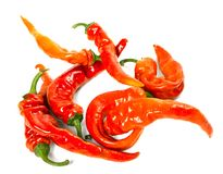 Red chili peppers with water drops Royalty Free Stock Photo