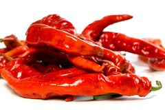 Red chili peppers with water drops on white background Stock Photos