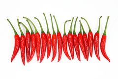Red chili peppers on a white Stock Images