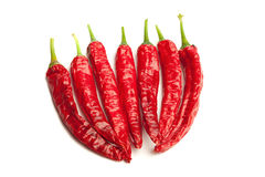 Red chili peppers,  on white Royalty Free Stock Photo