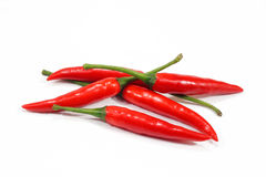 Red chili peppers on a white background Royalty Free Stock Images