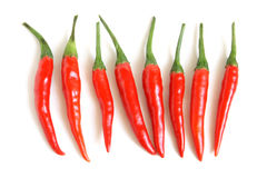 Red chili peppers Stock Photos