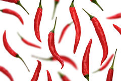 Red chili peppers on white background Royalty Free Stock Photography