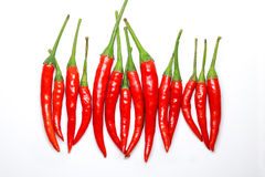 Red chili peppers on white background. isolated fresh hot chili. Peppers. Fresh spice ingredient for cooking Stock Images