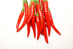 Red chili peppers on white background. isolated fresh hot chili. Peppers. Fresh spice ingredient for cooking Stock Photography