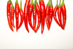 Red chili peppers on white background. isolated fresh hot chili. Peppers. Fresh spice ingredient for cooking Stock Image