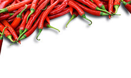 Red chili peppers with white space Royalty Free Stock Photography