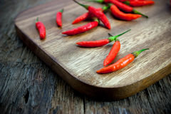 Red chili Peppers on wood chopping Stock Images
