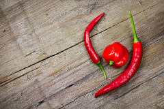 Red chili peppers Royalty Free Stock Image