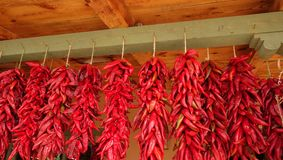 Red chili ristas hanging on a green beam Royalty Free Stock Photo