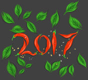Red chili 2017 scene. Red chili new year 2017 scene vector drawing on a gray background royalty free illustration