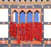 Red Chili spice dry by hanging in front of traditional Bhutanese