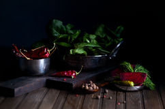 Red chili and spinach leaves Stock Images