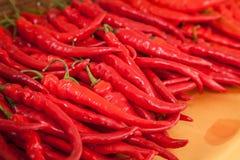 Red chili was displayed Stock Photo
