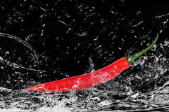 Red chili water splashing. Side view of red chili pepper splashing in water with black background Royalty Free Stock Photo