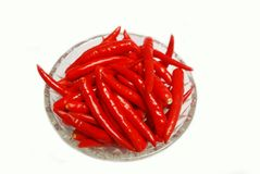 Red chili on white background Stock Photos