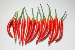 Red chili. On white background Stock Photo