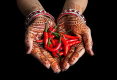 Red chili. Woman hands with henna holding red chili isolated on black background with clipping path Royalty Free Stock Photo