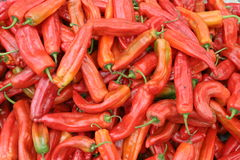 Red chilies. Pile of fresh hot red chilies royalty free stock image