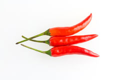 Red chilies Stock Images