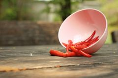 Red chilies in a pink bowl on wooden background Royalty Free Stock Photo