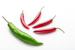 Red chilies. On white background Stock Images