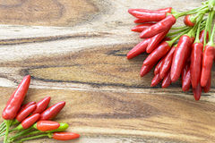 Red chilies Royalty Free Stock Photography