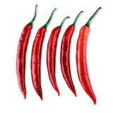 Red chilis Royalty Free Stock Images
