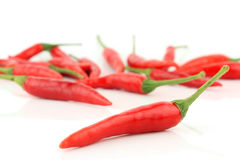 Red Chilis. Isolated on white background Royalty Free Stock Photos