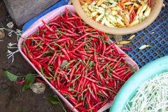 Red chilis capsicum annuum Royalty Free Stock Photos